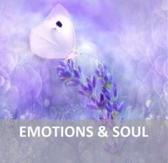 Everything about Emotions & Soul